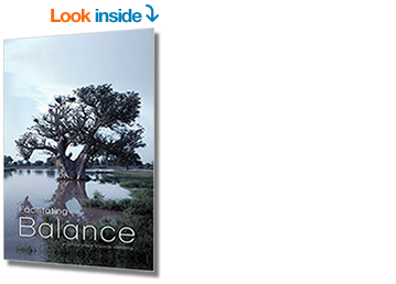 Facilitating Balance - Amazon