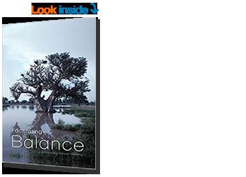 Facilitating Balance - Amazon